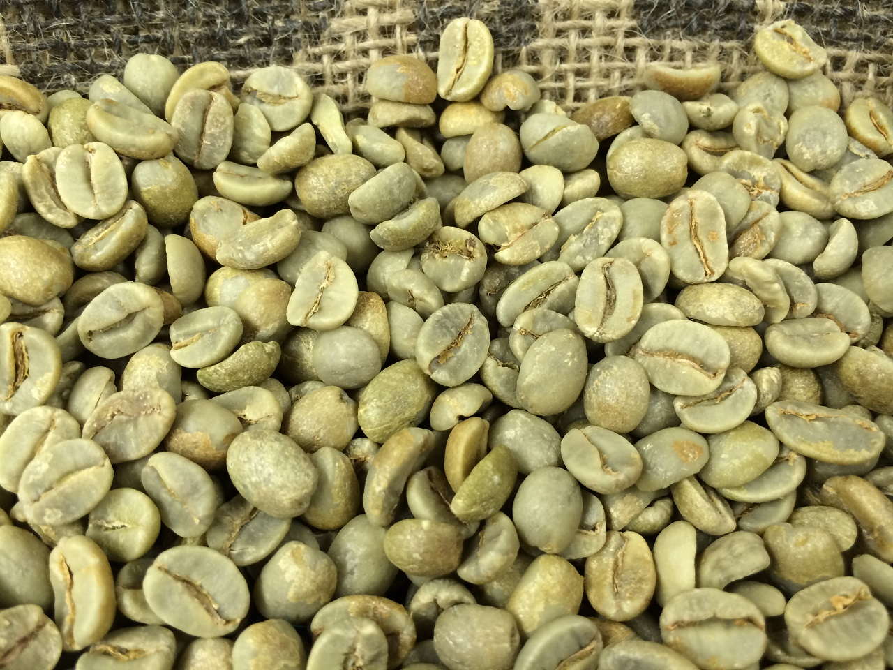 100 Pound Brazil Unroasted Top Rated Coffee Beanstop Rated Coffee